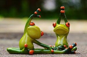 Frogs training