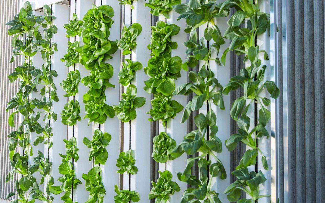 Gonvarri Material Handling joins global vertical farming campaign