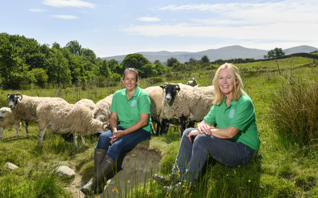 Learning from the land set to continue at Low Beckside Farm